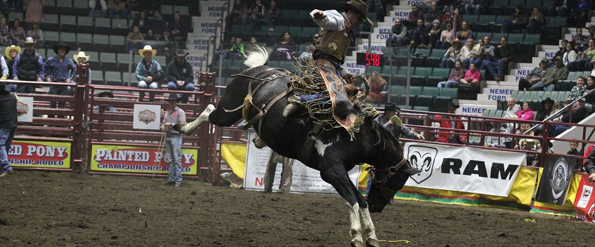 Saddle Bronc Riding